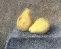 11. Pears 9''x12'' 22.86x30.48cm oil painting on wood 2019